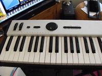 ALTO PROFESSIONAL LIVE 88 MIDI KEYBOARD
