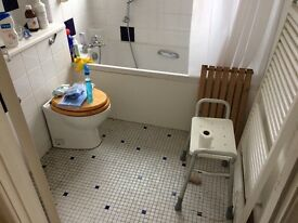 Domestic Cleaner with availability for regular and one off cleans