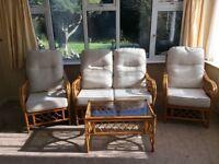 Paitio furniture wicker
