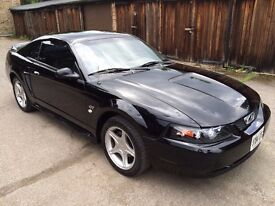 2000 Ford Mustang GT Coupe 4.6 V8 Automatic