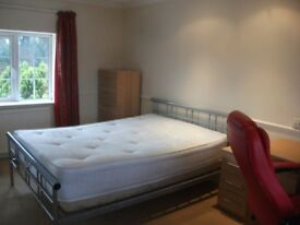 FURNISHED LARGE DOUBLE ROOM TO LET