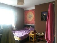 Lovely double room to rent immediately