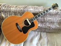 1977 Guild F50-R Original Vintage Jumbo Acoustic Guitar