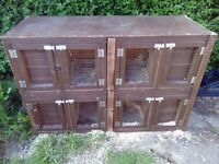 Ferret hutch four in one