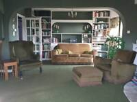 Retro vintage antiques house clearance - Furniture, books, lights, ornaments
