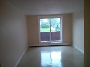 EIWO Canadian Management Ltd - 2 BEDROOM UNITS FOR RENT Cambridge Kitchener Area image 4