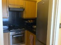 Single room in flatshare with one other. Zone 2, next to Homerton Stn, London E9.
