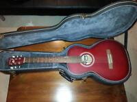 Art and Luthrerie acoustic guitar