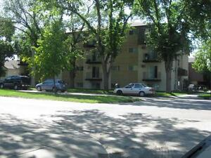 1002 Dufferin Avenue - newly renovated suites available!