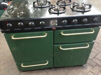 Green Range gas cooker dual.....Mint free delivery