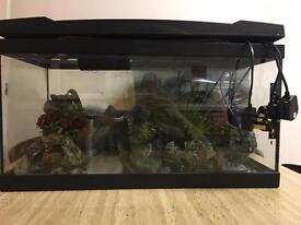 Marina premium 54L Fish tank