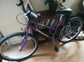 Purple Raleigh Zing bike in good condition