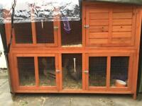 Rabbit/small pet hutch, hutch cover and all accessories