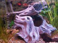 Fish hide