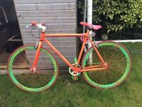 urban culture fixed gear bicycle