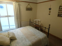 Spacious Room in Professional House Share