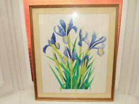 Pretty iris water colour