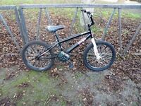 PIRANHA BMX For Sale. Fully Serviced & Ready To Ride. Guaranteed.
