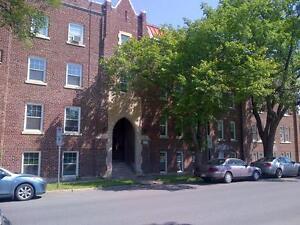 Bachelor Suite -  - Linden Manor - Apartment for Rent Regina