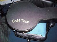 gold tone case