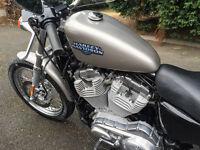 """Harley Davidson Sportster 883 """"Low Milage 2995"""""""