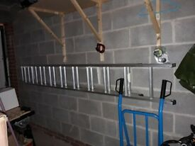 Alliminium Extendable Long Ladder Buiiders DIY