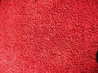 Large Carpet/Rug