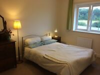 Spacious, furnished, double bedroom in flat share