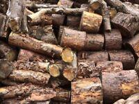 Softwood firewood logs