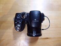 Fuji Digital Camera S2950