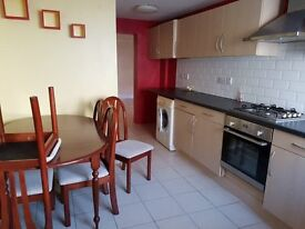 ground floor flat to let