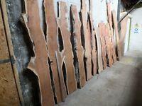 Hardwood timber slabs for sale, Elm, Yew, Oak etc. Dunoon, Scotland, Argyll. Wood for sale