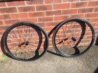 New DT Swiss R24 Spline road bike wheels and Continental tyres for disc brakes