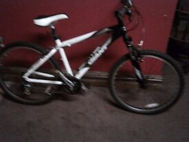Giant moutain bike excellent condition.