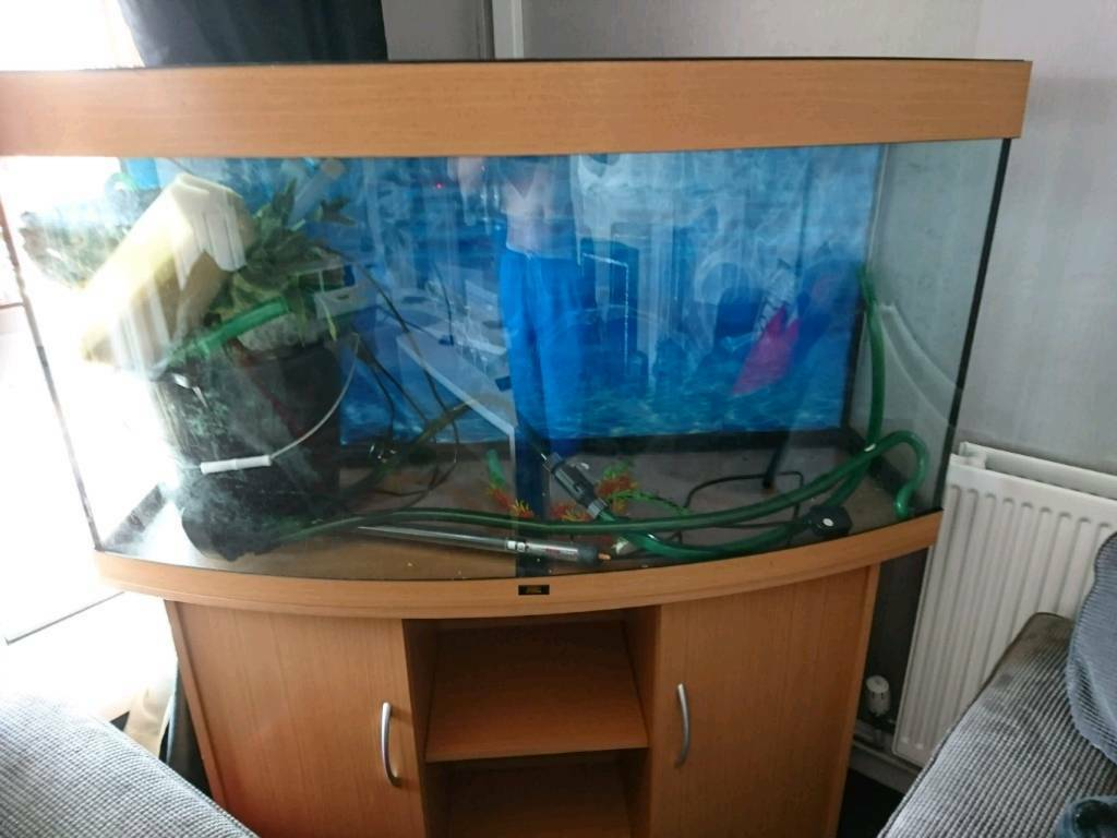 4 ft bowed jewel fish tank with stand