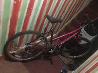 EMMELLE Oasis ladies mountain bike 15 gears 18 inch frame 26 inch wheels v brakes