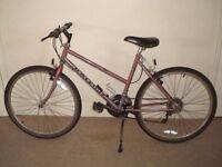 "Raleigh Monsoon 18.5"" Mountain Bike"