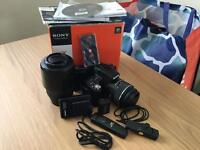 Sony A55 Digital SLR Camera with Lenses