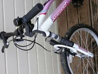 Child's bike sutiable age 5 to 8 - £25 (stabiliser included if required)