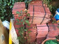 Plain tiles, antique red