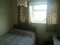 Pretty double room to let in Winton