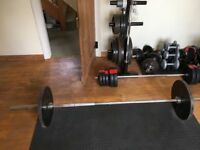 Olympic weights, bars, weights tree and bench!