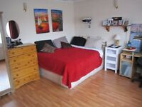CLEAN IMMACULATE GOOD SIZED ROOM IN SUPERIOR HOUSE ALL INCLUSIVE