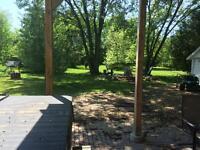 lawn cutting and yard work