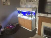 4ft marine Tank full setup
