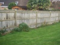 FENCING PANELS USED. Featheredge 3m x2m with TopCap. See photos.