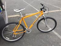 "Raleigh mountain bike 18"" frame"
