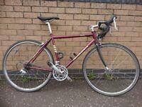 Revolution audax bicycle (52cm)