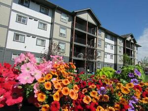 Pet-Friendly Airdrie 2 Bedroom for Rent near Kingsview Market