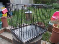 small dog cage 2ft